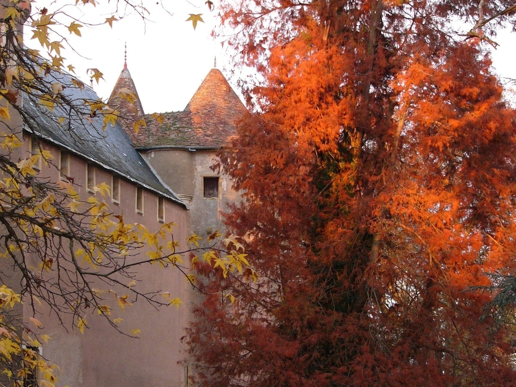 remparts automne