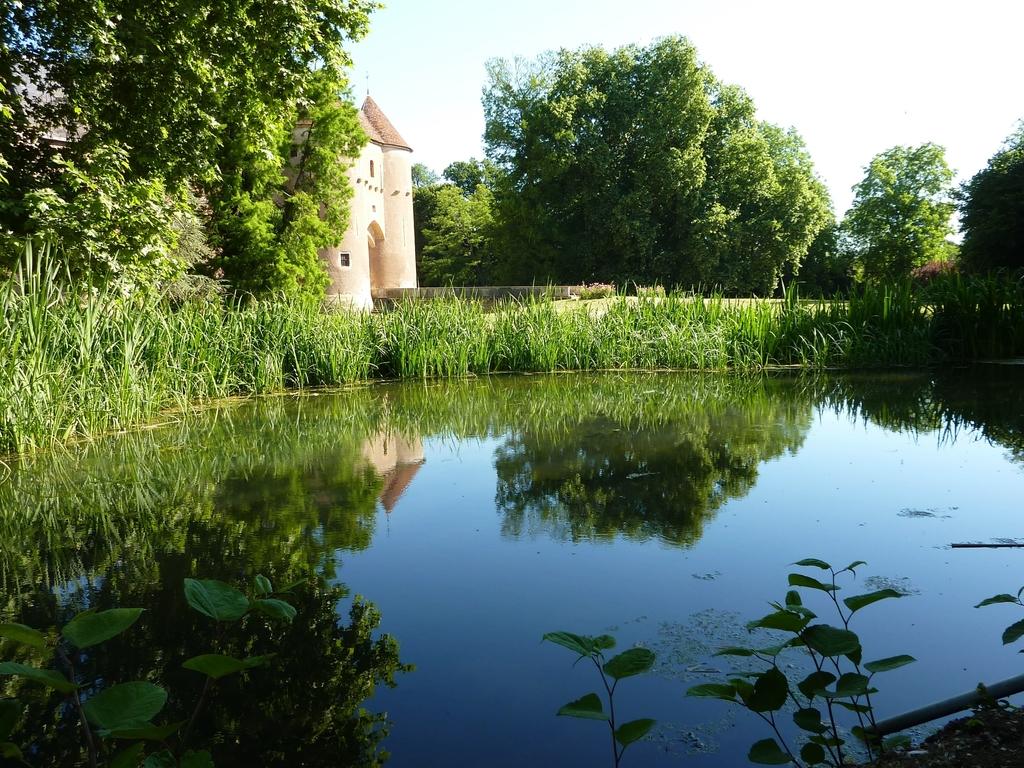 Le domaine du chateau