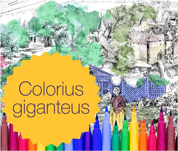 Visuel Colorius giganteus au Château d'Ainay-le-Vieil