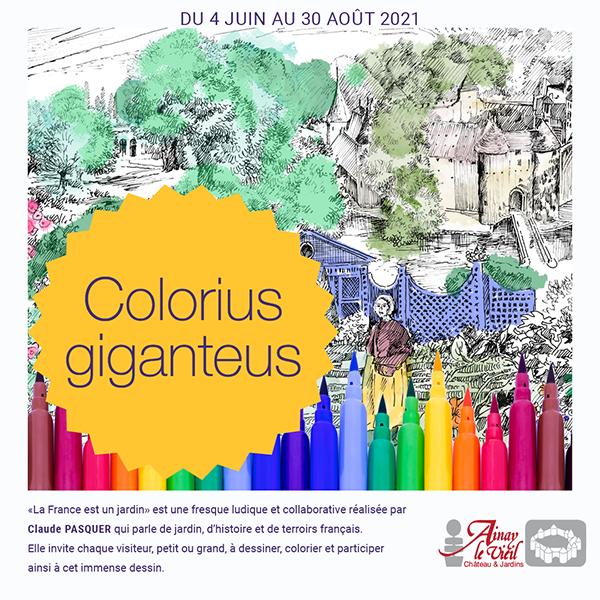 Visuel Colorius giganteus de Claude Pasquer au château d'Ainay-le-Vieil