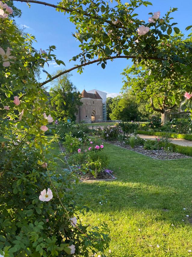 Château d'Ainay-le-Vieil, sous un beau soleil, au loin la poterne vue depuis les arches fleuries de la roseraie